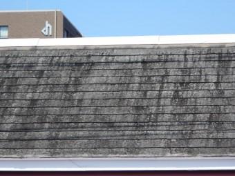 シングル屋根現場調査