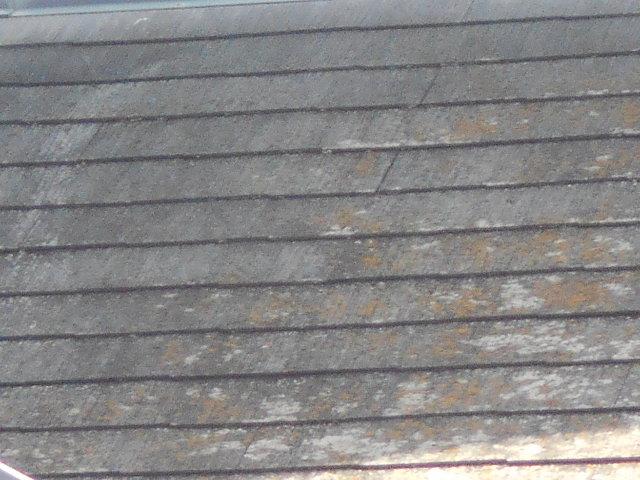 カラベスト屋根裏現場調査