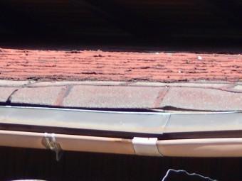 シングル屋根調査