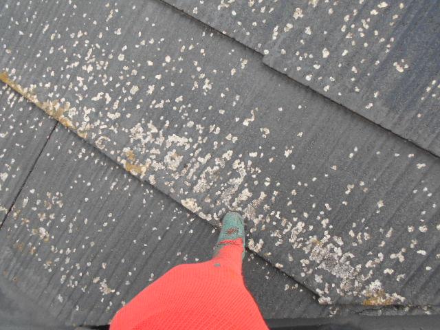 大垣市にて強風により飛散した棟板金 屋根調査を行いました。