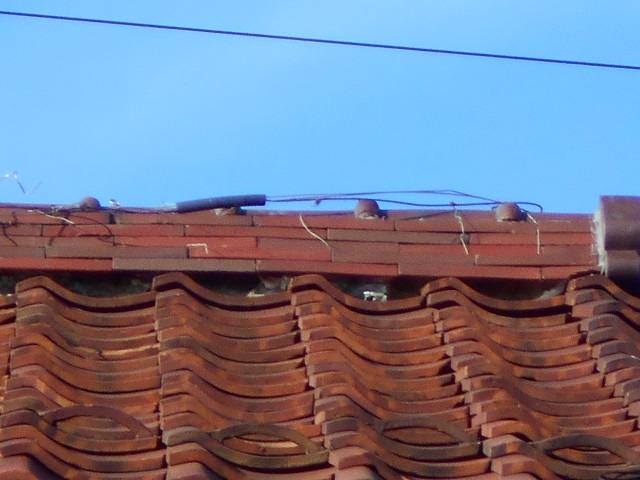 大垣市にて雨漏りをしている瓦屋根を調査いたしました。漆喰の詰め直し工事をご提案しました。