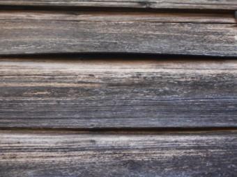 杉板張り調査