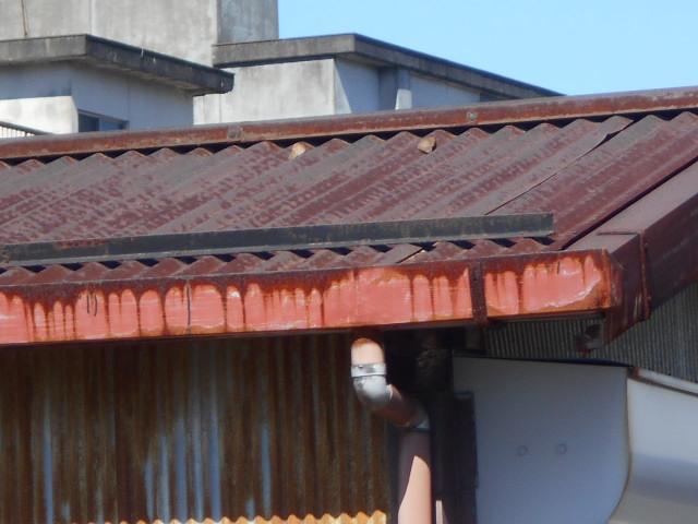 トタン外壁屋根調査