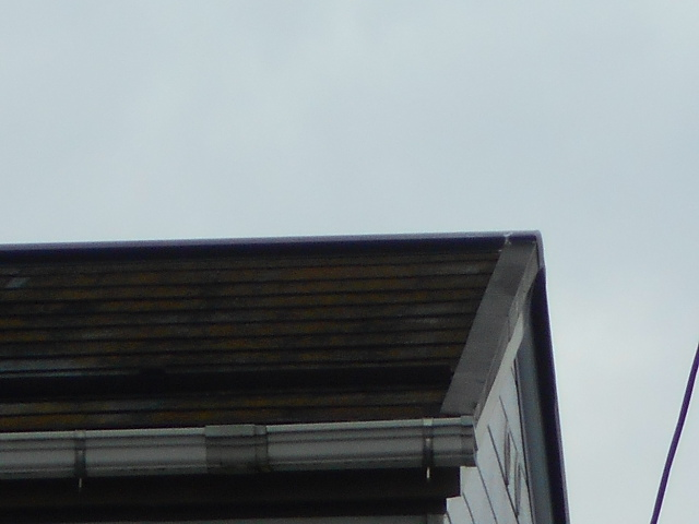 カラーベスト屋根調査