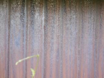トタン壁調査