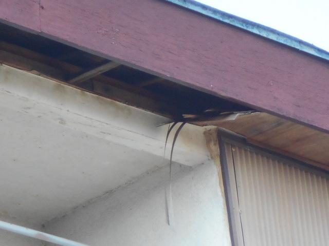 大垣市 軒天ベニヤの脱落、外壁波トタンが錆び錆び・建物外装調査