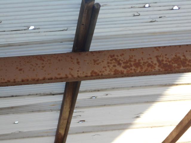 塩ビ波板屋根調査