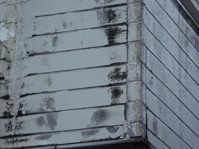 大垣市 外壁窯業系サイディングボードの表面が欠けて地肌が出ています。放置は危険
