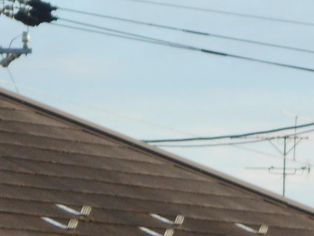 カラーベスト屋根t調査