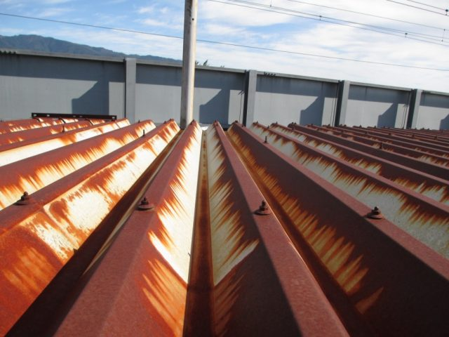 折半屋根の錆びがでている状況