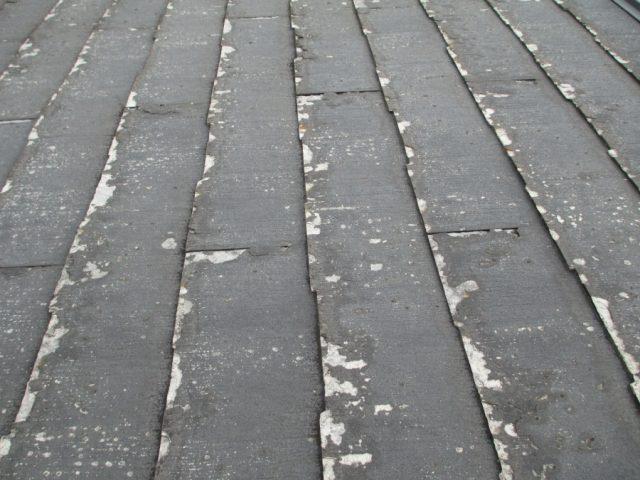 パミール屋根点検