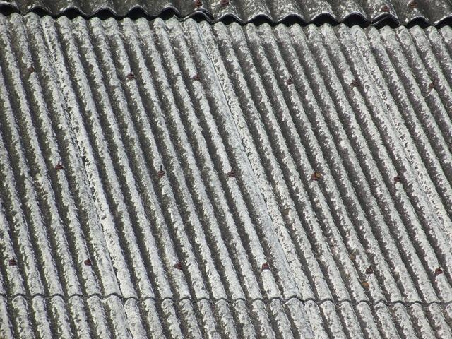 小波スレート屋根調査