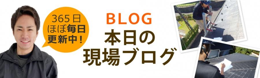 岐阜市、羽島市、岐南町、笠松町エリア、その他地域のブログ